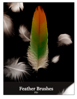 Feather Brushes by MelloStock