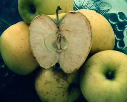 The last days of the apple by yavorancho