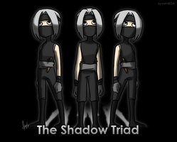 Pokemon: The Shadow Triad by ky-nim