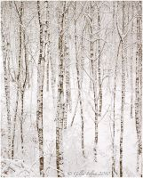 Birches by Swordtemper