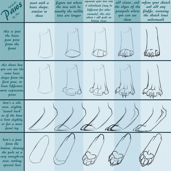 Digitigrade Paw Tutorial by AlliNix