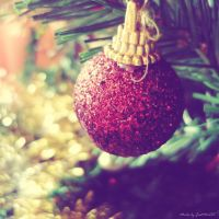 In the Xmas spirit by Iulia-Oprinesc