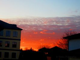Just another Morning by Michies-Photographyy