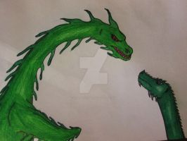 Green Dragons by VoadorChama