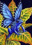 Blue Poison Fairy Frog by TabLynn
