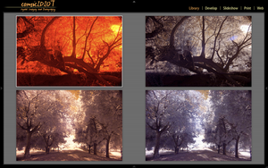InfraRed Photography Preset by comicidiot