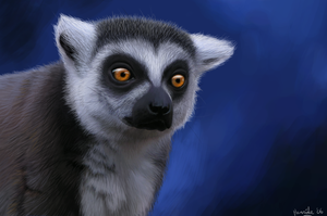Mr. Lemur by Henrieke
