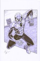 Spider-Man Pin-up by shinlyle