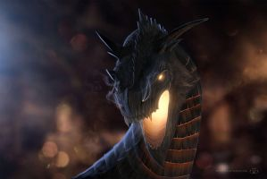 Dragon by pipper-SVK