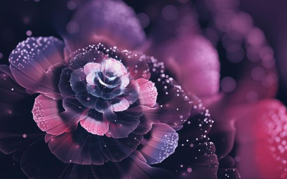 Purple Flower 3D Abstract Photography by neoarale