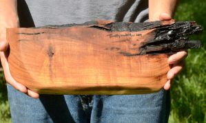 Mesquite Tray Bottom by lamorth-the-seeker