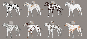 Dalmatians (closed) by Pred-Adopts