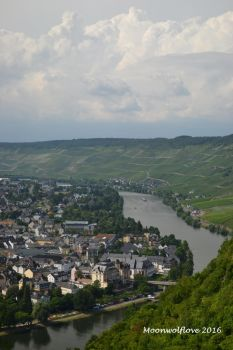 Beauty of the Mosel by Moonwolflove