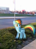 What I found at my bus stop! (This made my day) by BCMmultimedia