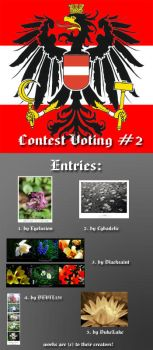 Contest Voting 2. by austrians