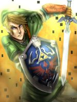 Twilight Princess Link by masayo11