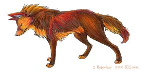 Colorful Wolf by Joava