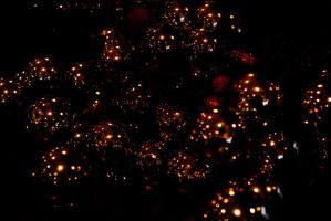 Cristmas deco reflections by steppelandstock