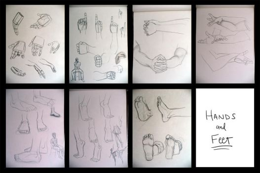 VA 131 Hands and Feet by kuabci
