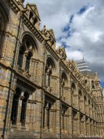 Natural History Museum 5 by missionverdana