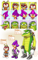 Some Chaotix Things by BlazeTBW