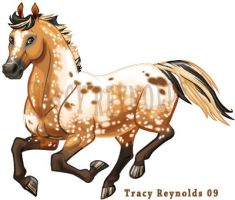 Howrse Snowflake Appaloosa by Calicougar