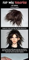 Fur Wig Tutorial by prettyinplastic
