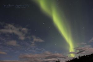 Northern Lights XI by Lizzimoa