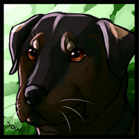 Com - Theapologizer Icon 3/4 by Soulphur