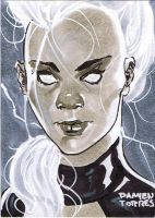 Storm Sketchcard by dtor91