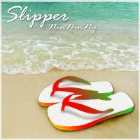 cover_Slipper by lottovvv