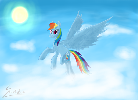 Soaring in the sky by 69norbi