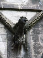 St. Fin Barre's Cathedral Dog Statue by lizardlea