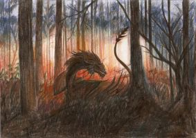 Secret of the forest by Nachiii