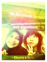 We Are Friends Forever by BLUEgarden