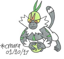 Passimian plays with melon