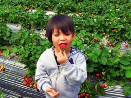 Boy and Strawberry by galleriamegusta