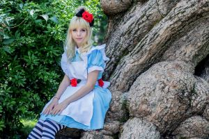 Alice in Wonderland by Bluegarnetmakeup