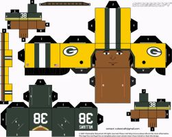 Tramon Williams Packers Cubee by etchings13