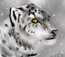 Snow Leopard: Iris: by NeonDefined
