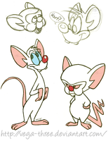 Pinky and the Brain Sketches by Vega-Three