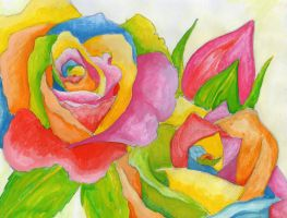 Colourful Roses by LillyRaindrop
