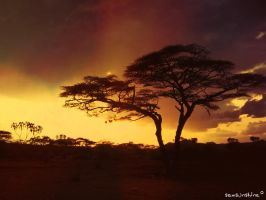 Africa Dream by 0357SamSunshine