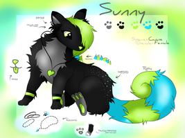 Sunny - Reference sheet 2014 by Whiteygirl200
