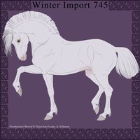 Nordanner Winter Import 745 by DemiWolfe