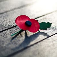 Remembrance I by adamlack