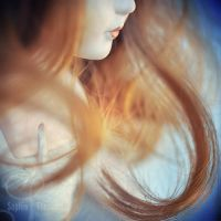 curls in the wind by prismes