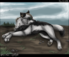 .: Numoy... Real Wolf style D: by Meoxie
