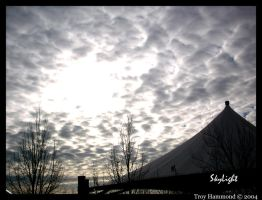 Skylight by cokeglass