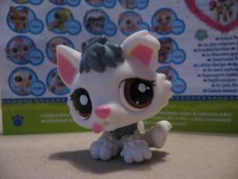 Littlest pet shop husky puppy 2439 by Twilightberry